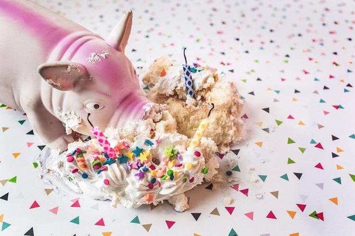 豚がケーキを食べている