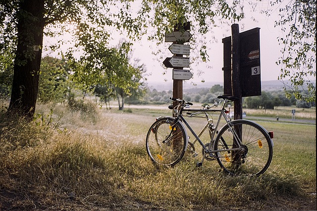 道端においてある自転車